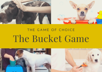 The Bucket Game